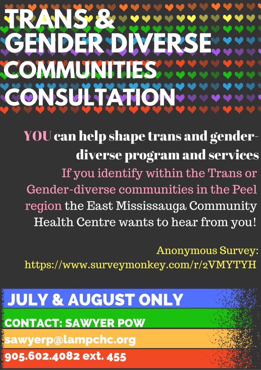 Trans Community Consultation